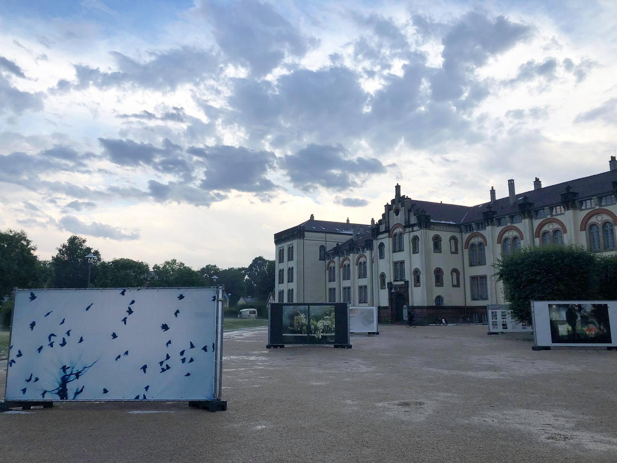 Aktuelles 6 – Trotzt Starkem Gewitter Hat Die Ausstellung Stand Gehalten!